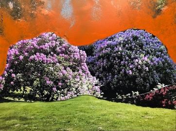 August Robin Peters, photo, acryl. 30x45cm. November 2018